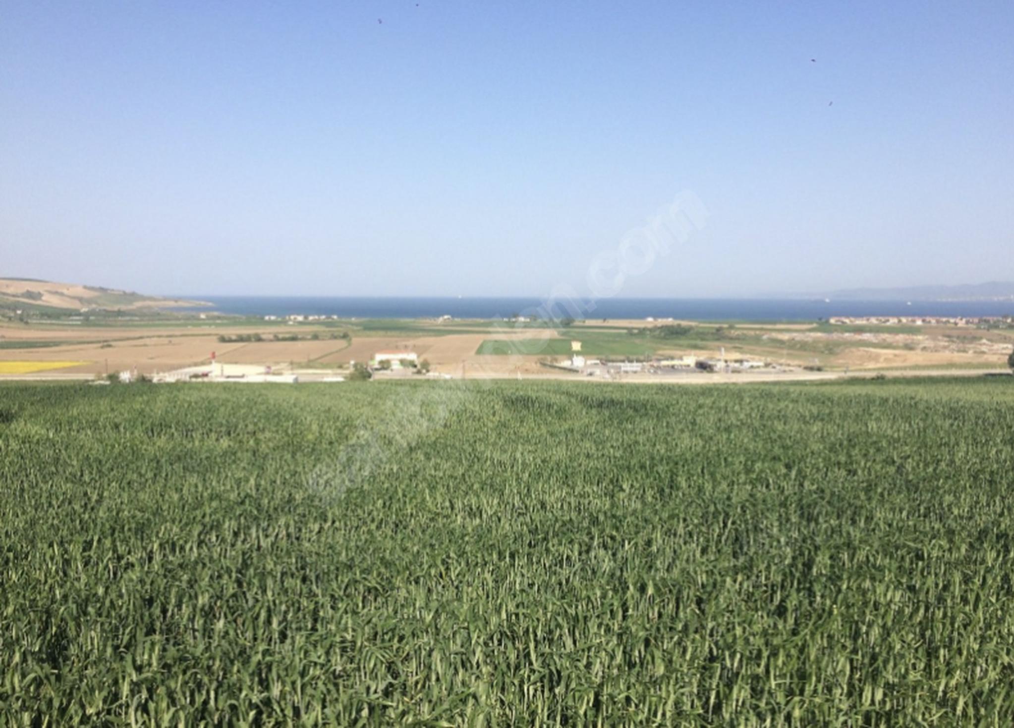 Çanakkale Gelibolu'da ticari imar alınabilecek arazi